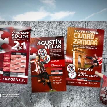 Carteles Zamora 2015